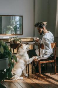 Is Pet Screening Useful